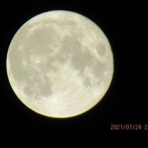 満月のそばに土星がいます。明日は木星に!