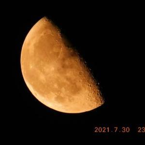 快調に今夜もお月様と出会えた