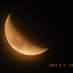 昨日と今日の未明の月