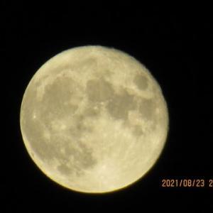 今日は、木星に遅れて上ってきた月