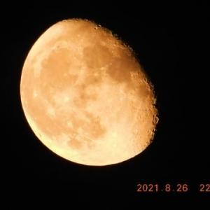 月は北寄りの地平からもうやっと10時過ぎて見える