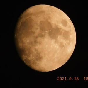 雨が止み、お月様が木星と顔を出した!