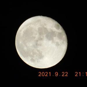 月が今日も静かに私たちを見守って・・・