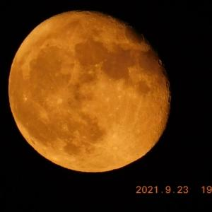 静かに今日も月が見えてきた