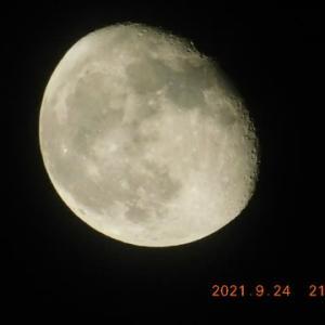 月が見られる夜が続いています