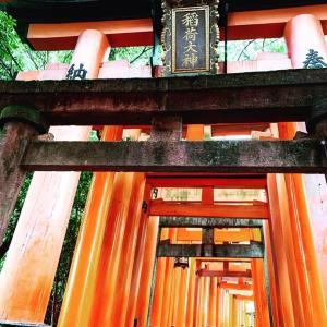 霊能者が行く!伏見稲荷大社の稲荷山。神寶神社ルートで行ってきました!!龍と狐のご縁の話。