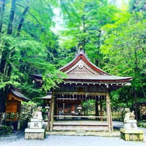 龍神目線!!旅をする龍が日本に差し掛かると…。大雨が起こる原理と、龍神さま目線の話。
