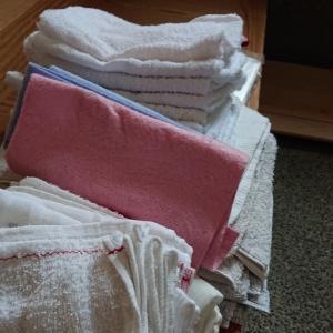 10/15(水)、宇都宮市千波にて、古タオル寄付&泥出しボランティアに行ってきました。