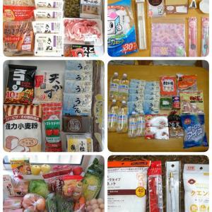 5人家族1ヶ月の食費予算3.5万円での買い出し結果
