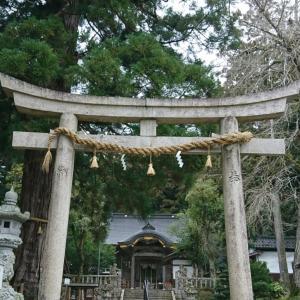 神社へ願掛け。からの~お寺でひな人形