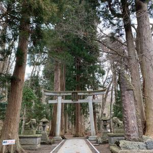 十和田神社のご神木からのメッセージ。