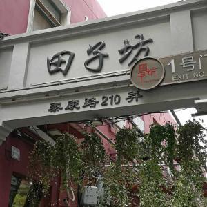 上海5日目