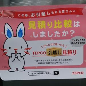 TEPCOのマスコットキャラ・テプコンがヒバニーに思えてならない件。