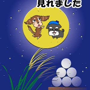 仲秋の名月と満月