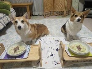 俺にケーキはあるのか!?