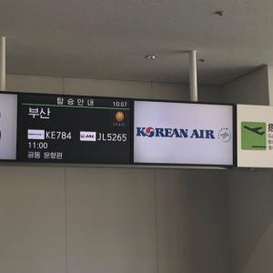 釜山到着♡