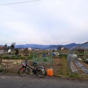 0円ガーデン と 大学生