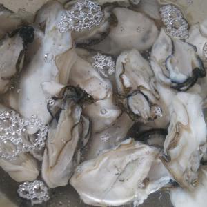 牡蠣のオイル漬け作り/引き出し掃除