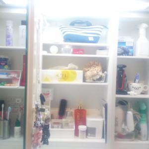 洗面所の鏡裏を整理/ヘアクリップの収納