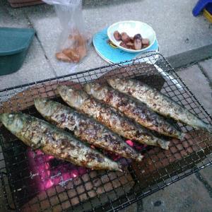 やっぱり七輪で焼いた魚はウマイ!!