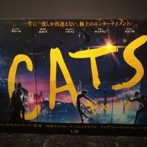 映画 CATS