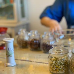 植物療法ベースコース