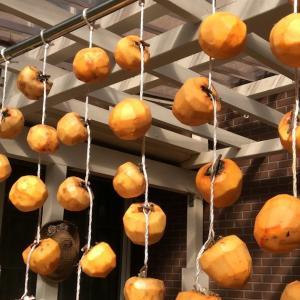吊るし干し柿