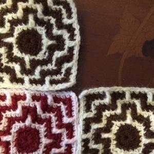 アフガン編みのモチーフ   今日のお花と山菜