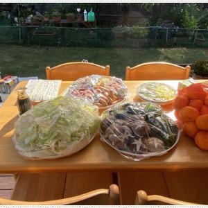 11月とは思えない小春日和のお庭BBQ、みなさん楽しそうで、無事に終われて良かったね~