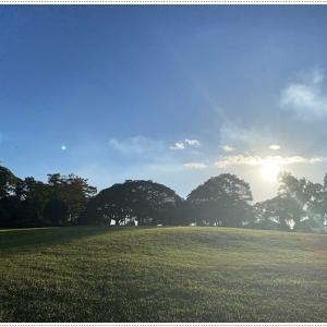 空も風も秋ですね、お散歩も気持ち良い季節です\(>∀<)/