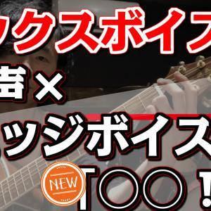 【続☆ミックスボイス直球練習!!】「裏声」×「エッジボイス」×「◯◯」⁉︎