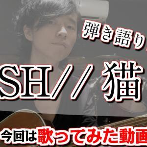 DISH//【猫】弾き語りカバー(今更ながら、歌ってみたよ。匠海くんにゃ勝てん(´д`))