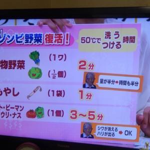 ゾンビ野菜復活します。NHK