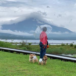 富士山 みえん