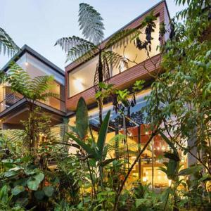 Mashpi Lodge マシュピロッジ(エクアドル Ecuador / Mshpi ) その1