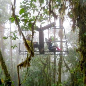 Mashpi Lodge マシュピロッジ(エクアドル Ecuador / Mshpi ) その2