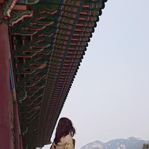 景福宮(キョンボックン)観光と土俗村の参鶏湯(サムゲタン)/韓国旅行(ソウル)2019/2日目②