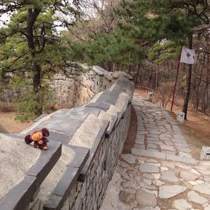 最終回!世界遺産の水原華城(スウォンファソン)と水原カルビ♪/韓国旅行2019/3日目②