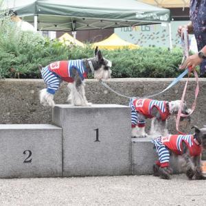 長野市 山街祭に行って来たのらー