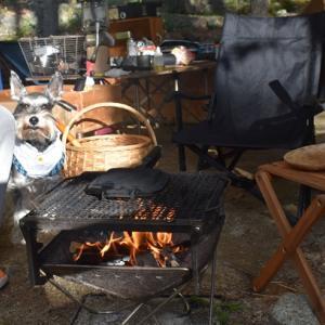 小黒川渓谷キャンプ場 ペットサイトでキャンプ 二日目