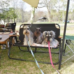 戸隠キャンプ場でキャンプ