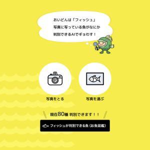 魚の種類を写真からAI(人工知能)で判別するアプリ!「フィッシュ」を使ってみた。