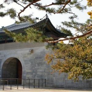 秋の景福宮さんぽ
