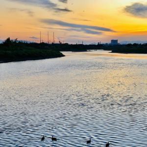 多摩川の夕焼