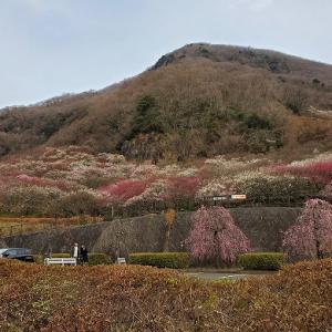 真冬の富士山ツーリング