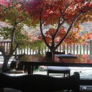 11月23日 上会津屋の紅葉