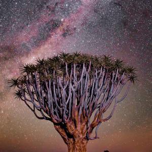 「勘違い」言う名の宇宙の真のアンテナ