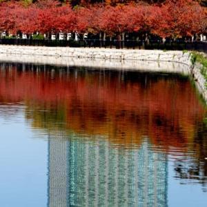 大阪城内散策