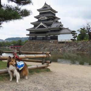 松本城へ byおおね