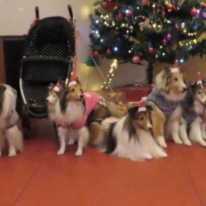 クリスマス会?